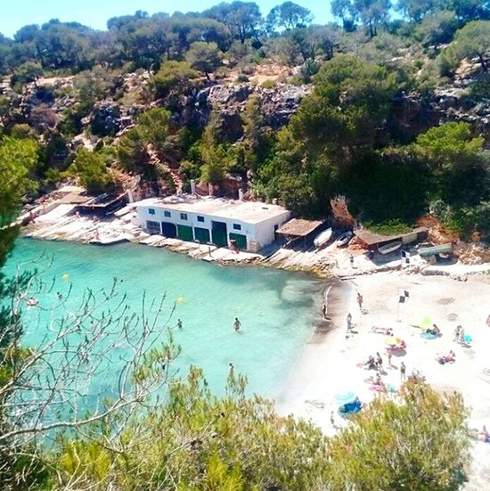 Cala Calapi Mallorca Outdoors Beach Clear Water Turquoise Water Cute Trees Boathouses Ruralspain Water Tree Non-urban Scene Outdoors Scenics