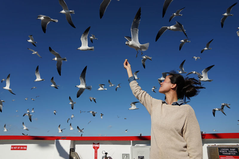 Low Angle View Of Woman Feeding Seagulls Flying Against Sky