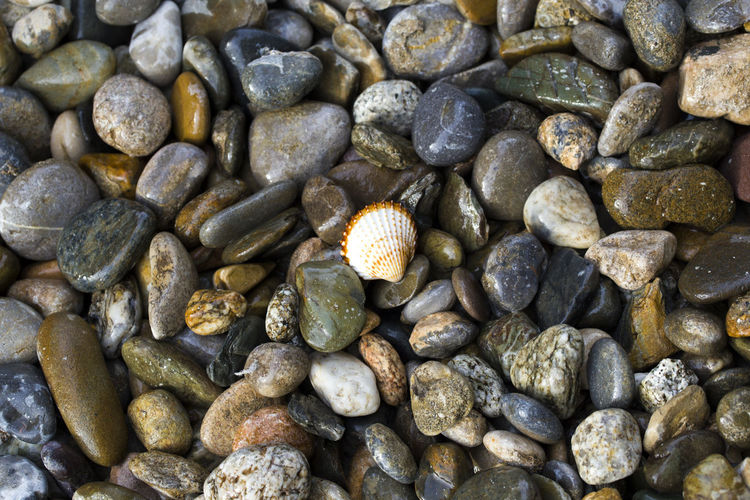 Abundance Backgrounds Beauty In Nature Brown Close-up Day Detail Full Frame Heap Large Group Of Objects Natural Pattern Nature No People Outdoors Pebble Stone - Object The KIOMI Collection