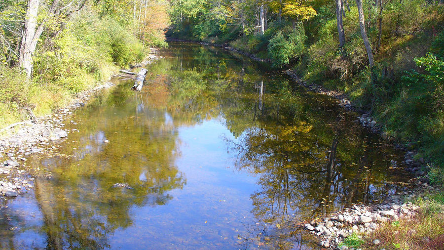 Fall River Landscape Autumn Beauty In Nature Forest Landscape Nature No People Outdoors Reflection River Scenics Tranquil Scene Tranquility Water