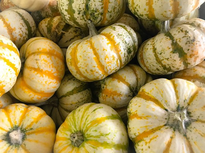Small white and orange pumpkins Food And Drink Food Vegetable Healthy Eating No People Raw Food Pumpkin Freshness Market Close-up Day Squash - Vegetable Gourd Outdoors Halloween Thanksgiving Harvest Country Life Autumn Fall Decoration Squash Gourds & Pumpkins Round Vegetables EyeEmNewHere