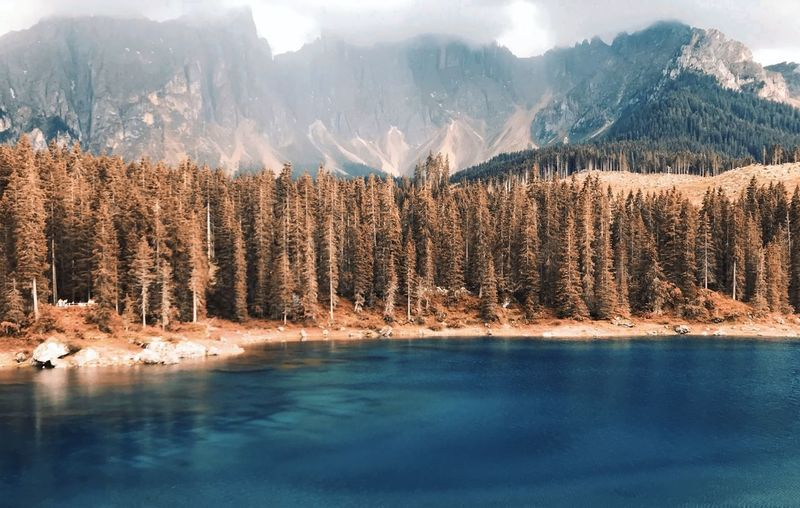 Panoramic view of lake by trees on mountain