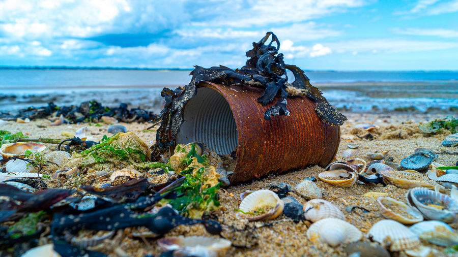 Close up of rusted can weathered on beach sand pollution litter rubbish in the ocean