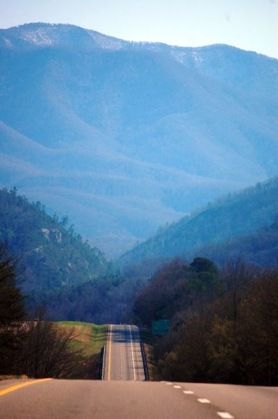 Road in the Blue Ridge Mountains. Blue Ridge Mountains Road Trip Tree Mountain Forest Fog Water Road Pinaceae Astronomy Pine Tree Mountain Range Countryside Empty Road