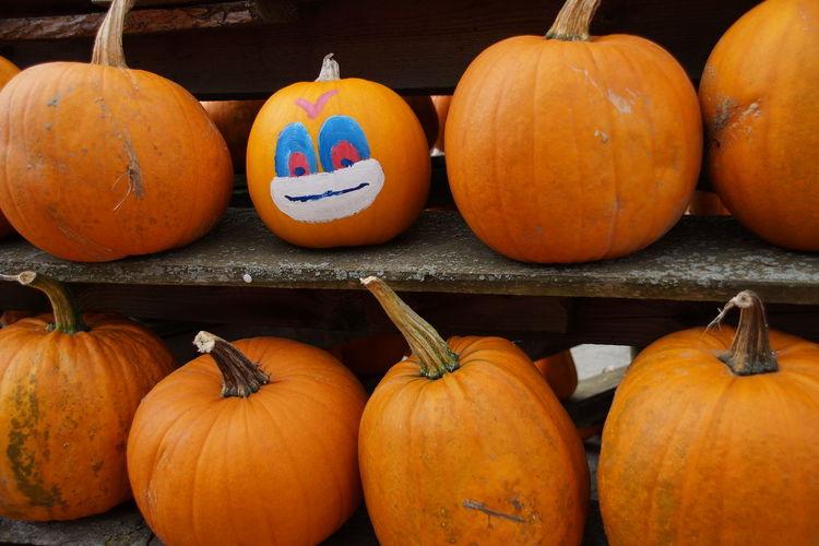 Pumpkins on shelf at market for sale
