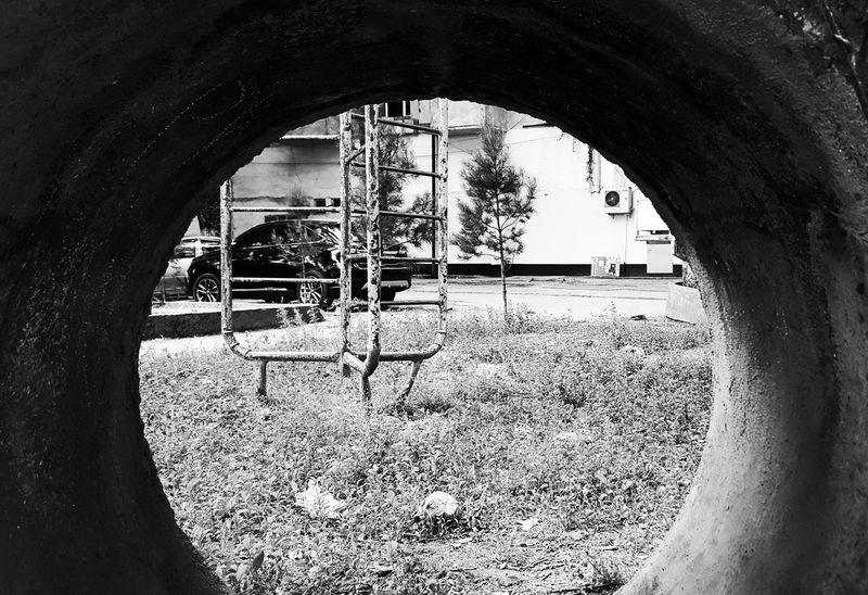 Rabbit Hole Galaxy S6 Mobile Photography