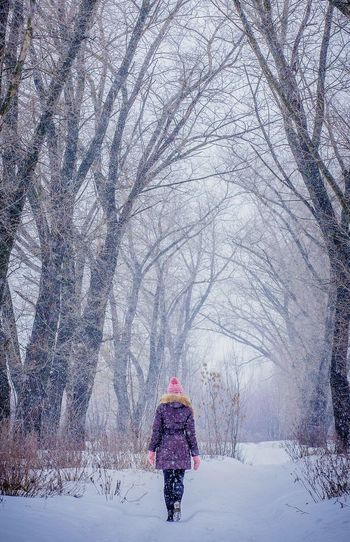 One Person Tree Winter Snow Snowing Girl Lonely Loneliness Cold Temperature Nature Forests Branches Fairy Fairytale