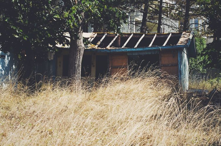 Abandoned Architecture Architecture Balkans Building Building Exterior Built Structure Bulgaria Bungalow Communism Day Destruction Grass Growth Hut No People Old Old Places Outdoors Outhouse Plant Shanty Shed Summer Travel