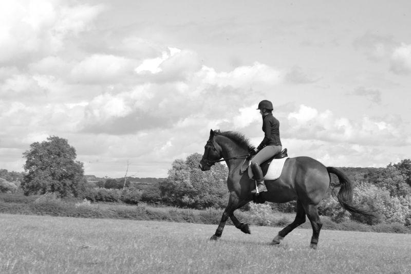 Female Jockey Riding Horse In Grassy Field Against Sky