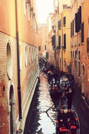 Under Pressure Venice, Italy Rush Hour Gondole In Venice Canali Canalgrande Gondolieri Calle Colors