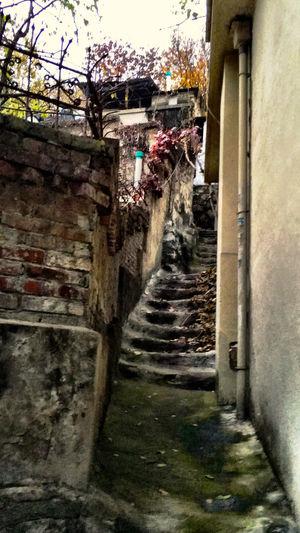 韓国 Korea Koreatown テジョン の 裏路地 Back-alley シリーズ06。この路地の階段はお手製コンクリートで、さらに年季が入って削れて窪んでいる。なかなか好みな情景なのですが、肩幅くらいしか無い階段で、どこまで続いているのか知りたくなった。(笑)裏路地探索路をGoogleMAPに反映するには、ヘルメットにカメラをつけないと無理だね! EyeEm Korea Streetphotography Stairs