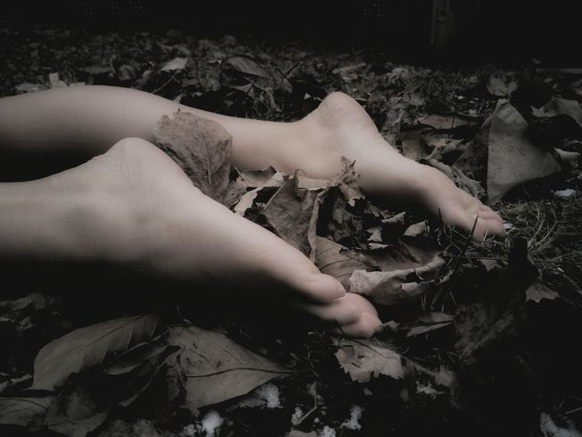 Emulation. Model used. Macabre Macabre Art Dark Darkart Shadow Bleak Somber Magick Nature Darkness Still Life Light And Shadow Ominous Surreal Gettyimages Artistic Art Portrait Leaves Autumn Leaves Cold Stillness