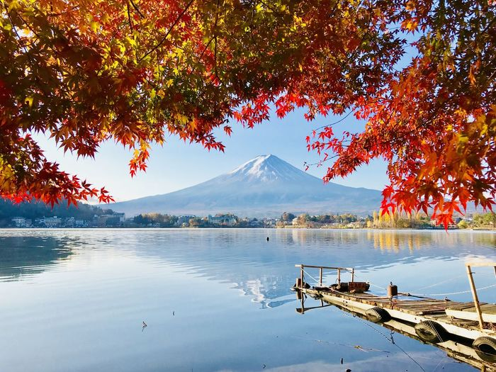 Autumn trees over lake against snowcapped volcano