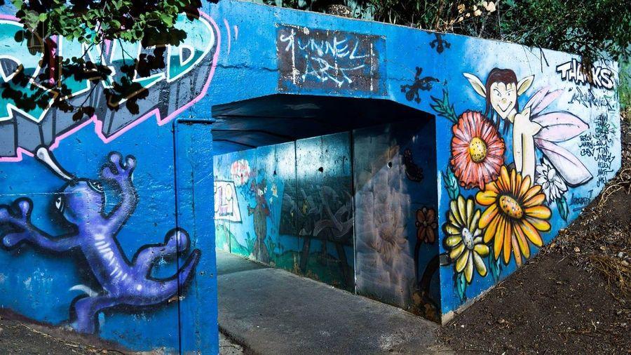 street art, Emerald Emerald Qld Tunnel Art Graffiti Colorful Bright At Night Public