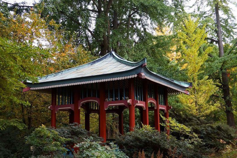 Gazebo in temple during autumn
