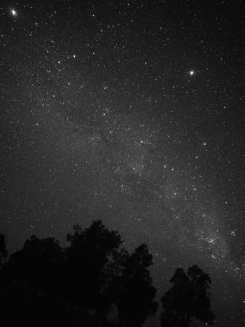 night sky at Pemberton HuaweiP9 Pemberton Star - Space Astronomy Night Space And Astronomy Constellation Galaxy Star Field Space Milky Way Nature Outdoors