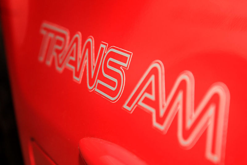 My 305 Trans Am Brand Close-up Communication Day Indoors  Neon No People Red Retail  Store Sign Text Transam