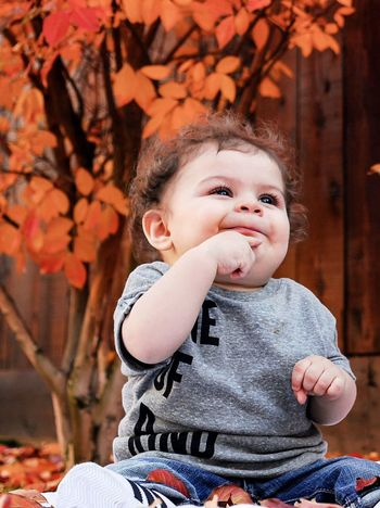 Pondering life after one.... EyeEm Selects Baby Childhood Babyhood Child Toddler  Cute Innocence Babies Only Happiness Outdoors Smiling Nature Portrait Tree Day Close-up Autumn EyeEmNewHere