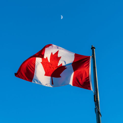 I AM CANADIAN Canada Canadian Flag Canadian Flag Blue Sky Sky Moon Patriotism Patriotic Blue Red Low Angle View Wind Nature Clear Sky No People Environment Copy Space Day Outdoors Pole White Color Sunlight Maple Leaf National Icon