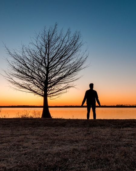 Silhouette man standing by bare tree against sea during sunset