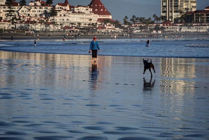 San Diego Beach Dogslife Coronado Beach EyeEm Best Shots - Sunsets + Sunrise Hotel Del Coronado Sony A6000 Dogdaysofsummer