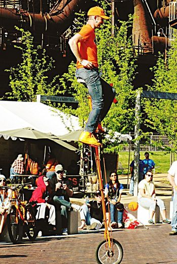 UNICYCLE SHOW Unicycle Tricks Adult Tree People Outdoors RISK Real People Day Togetherness Stunt Young Adult Men Adventure Show