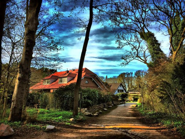 Elmshorn Germany🇩🇪 Hdr_arts  Hdr Edit Colorful Sunset Hdr_lovers In The Forest House