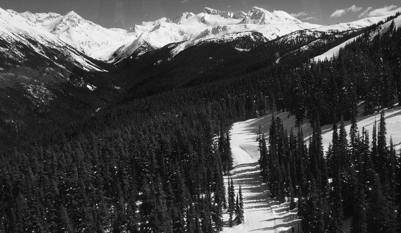 Mountains Snow Trees Winter Wonderland Snow ❄ Mountain View Blackandwhite Black & White Blackandwhite Photography Blackandwhitephotography Skiing Snowboarding Scenery Landscape