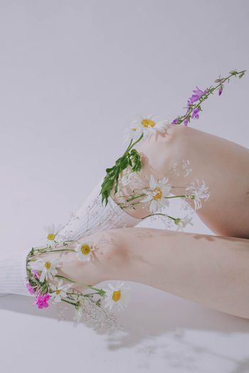 Low angle view of woman holding flowering plant
