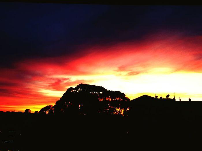 UN ESPECTÁCULO CADA DIA Tranquility Romantic Sky