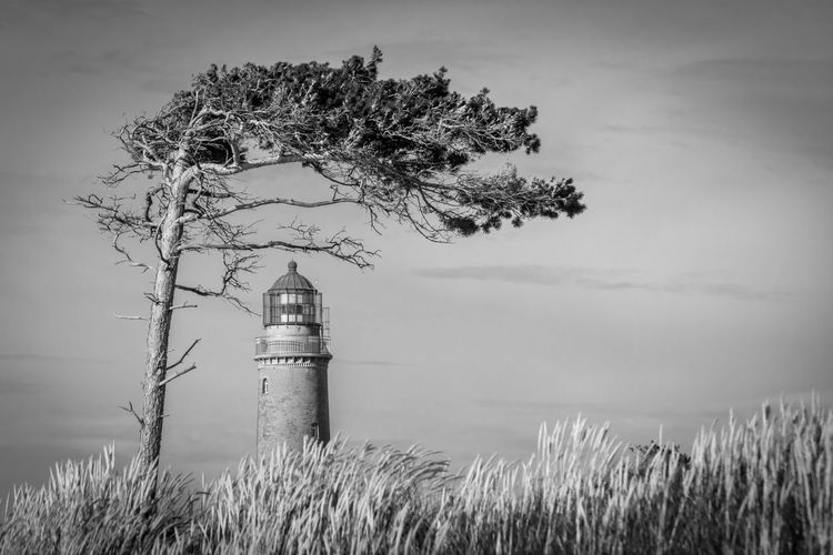 Day Lighthouse Nature No People Non-urban Scene Outdoors Tower Tree Windflüchter Nikon D7100 Wind Beauty In Nature Blackandwhite Fine Art Photography Fine Art Ostsee