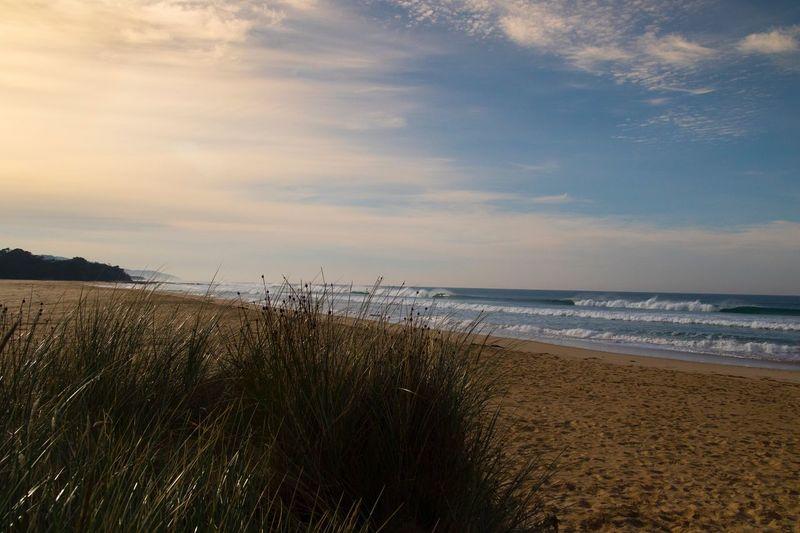 Beach at Apollo Bay Sea Beach Horizon Over Water Water Nature Sand Tranquil Scene Scenics Sky Tranquility Beauty In Nature Grass Marram Grass Vacations Wave Apollo Bay Great Ocean Road, Australia Australia