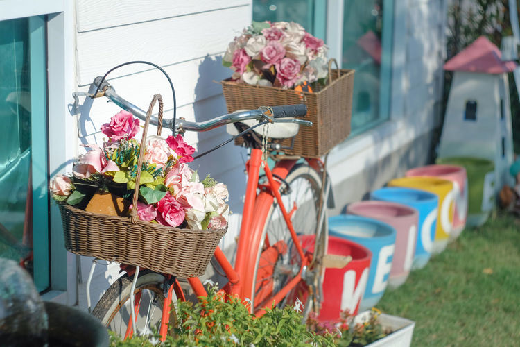 Potted plants in basket by flower shop