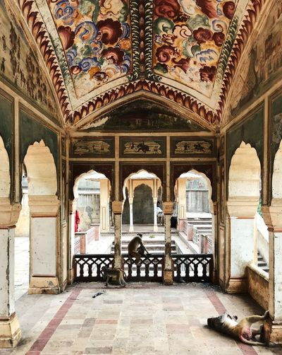 India Monkeys Travel Arch Architectural Column Architecture Art And Craft Arts Culture And Entertainment Building Built Structure Ceiling Day Design Fresco Incredible India Indoors  Mural No People Ornate Pattern Rajasthan Temple The Past Tiled Floor Travel Destinations