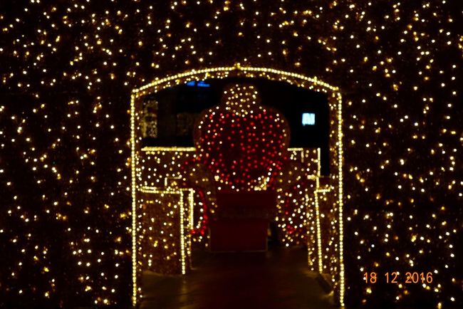 Illuminated Night Christmas Christmas Decoration Celebration No People Outdoors