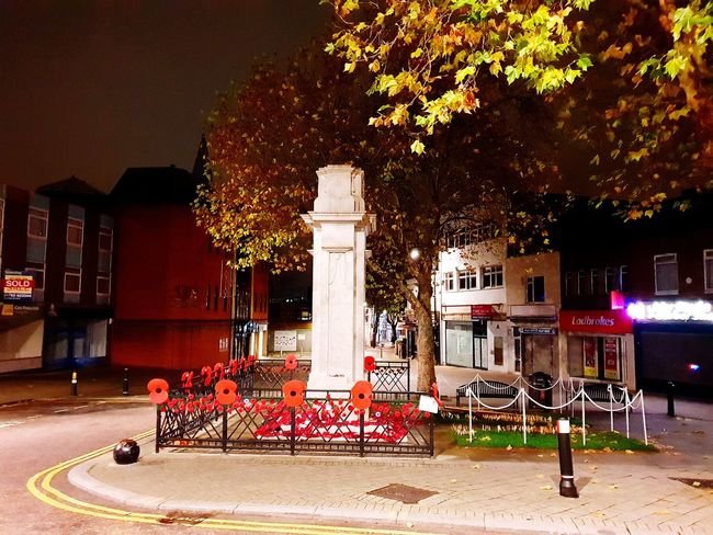 Memorial Poppy Swindon Misty Outside Photography Overcast Weather ❤ Misty Morning City Tree Architectural Column Red Architecture Built Structure Historic War Memorial Monument Triumphal Arch