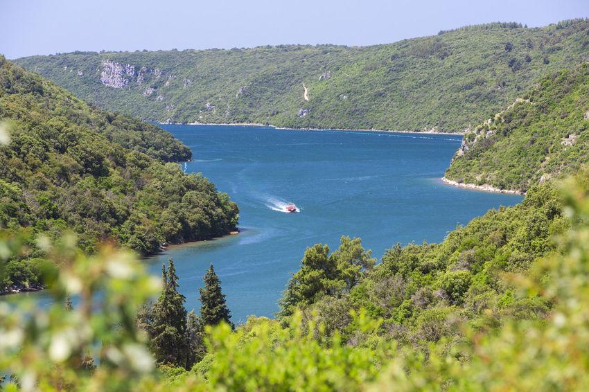 Adria Beauty Beauty In Nature Boat Tour Boat Trip Coastline Croatia Fjord Hill Holiday Istria Landscape Limfjord Limfjorden Limski Limskikanal Mediterranean  Outdoors Scenics Sightseeing Tranquil Scene Tranquility