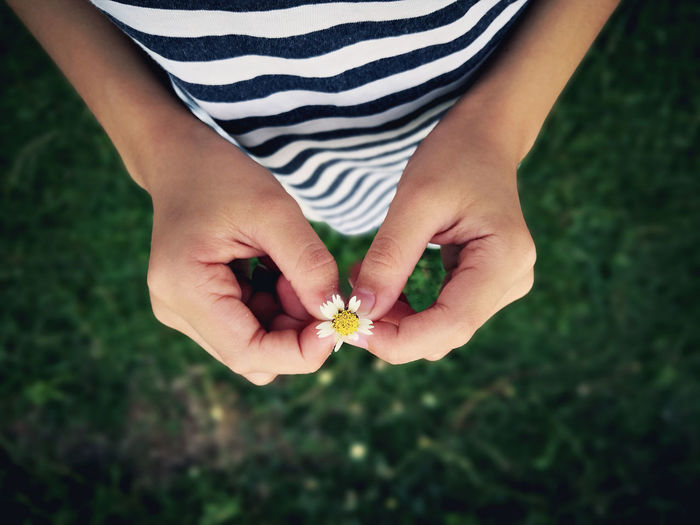 Midsection of woman holding flower on field