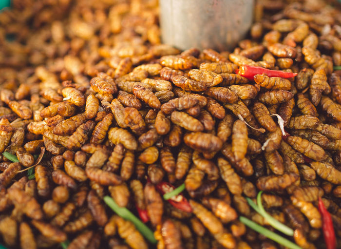 Food Stall Selling Fried Silkworm