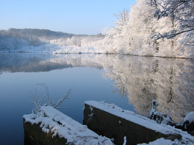 2003 France Beauty In Nature Cernay-la-ville Cold Temperature Day Lake Nature No People Outdoors Reflection Scenics Sky Snow Tranquil Scene Tranquility Water Winter