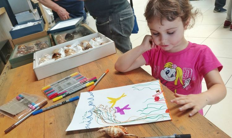 Shells and Art Shell Shells Girl Babygirl The Portraitist - 2018 EyeEm Awards Italy Child Childhood Paper Skill  Concentration Multi Colored Drawing - Activity Creativity Casual Clothing Colored Pencil Paintbrush Drawing - Art Product Palette
