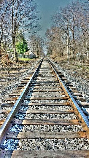 Train tracks back in Indiana. Life Is A Journey Train Tracks Long Walk Down Eye4photography  Eyem Best Shots Eyem Gallery