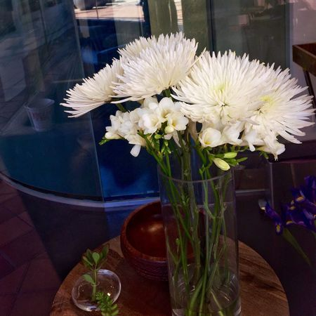 White chrysanthemums and freesias in a vase on a table. Flower Freshness Table Vase Fragility Flowers Freesia Chysanthemun White Flower Head Decoration Place Setting Bouquet Plant Bunch Of Flowers Beauty In Nature Close-up Focus On Foreground Blue Day Indoors