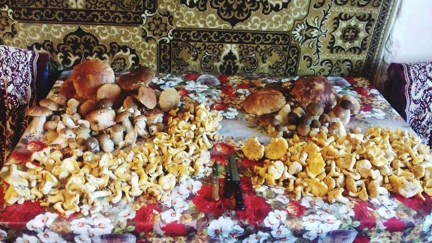 #mushrooms Mushrooms Mushrooms 🍄🍄 Mushroom Nature Boletus Fungus Белый гриб боровик лето Chanterelle Mushrooms Chanterelle грибы лисички грибнойсезон Retail  Close-up