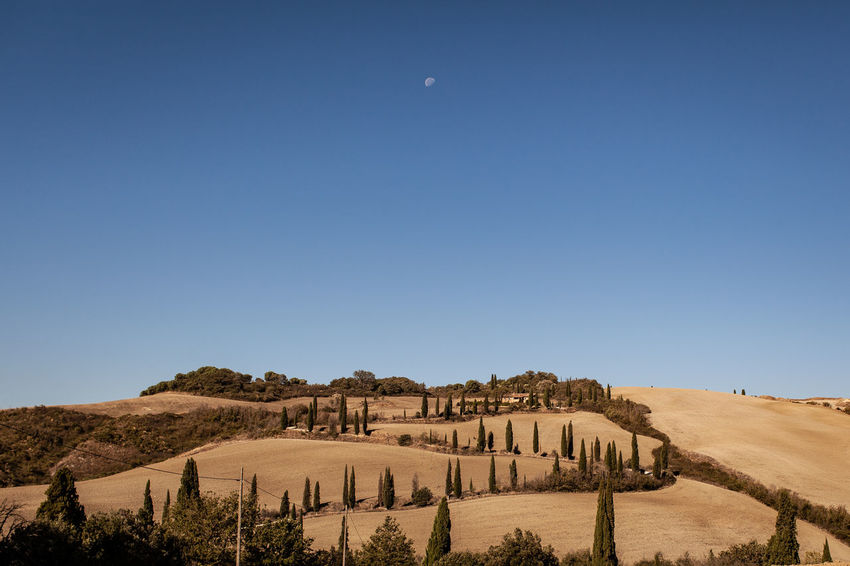 The Italian series / Canon 5d / 35mm Tuscany Tuscany Countryside Arid Climate Beauty In Nature Blue Clear Sky Climate Copy Space Day Desert Environment Land Landscape Nature No People Outdoors Plant Scenics - Nature Sky Tranquil Scene Tranquility Travel Destinations Tree