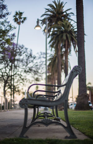 Street benches Beauty In Nature Blue Sky Buildings Cars Clear Sky Empty Glow Grass No People Orange Sky Outdoors Palm Tree Pink Sky Railing Road Sidewalk Sky Street Street Benches Street Lamp Street Lights Structure Trees Twilight
