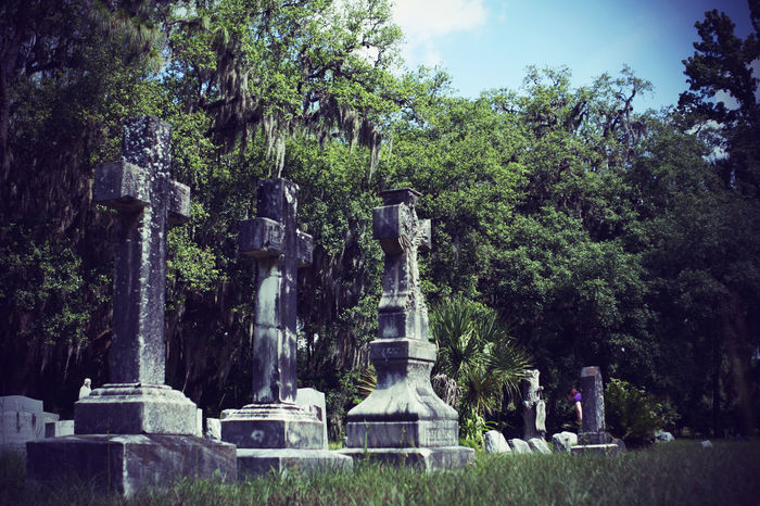 Cemetary Beauty Cemetery Cemetery Photography Cross Memorial Memoriam Monuments Religion And Tradition Weathered Art Cemetery Cemeteryscape Day Gravestone Headstones Headstones In A Row No People Outdoors Peaceful Peaceful Place Religion Religious  Religious Architecture Tombstone Weathered Stone