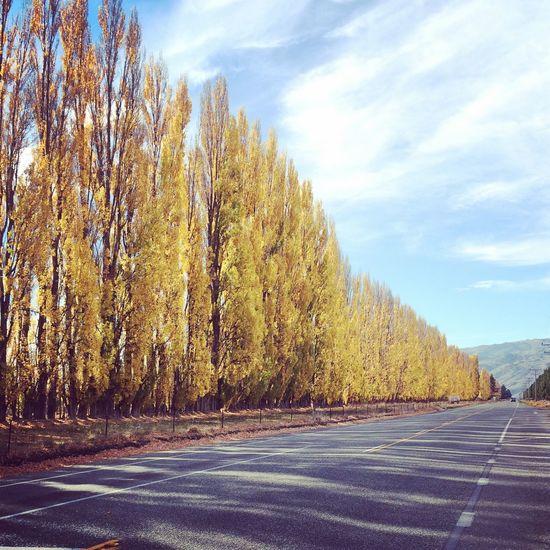 Queenstown Nz New Zealand Beauty Landscape_photography Enjoying Life Placetobe
