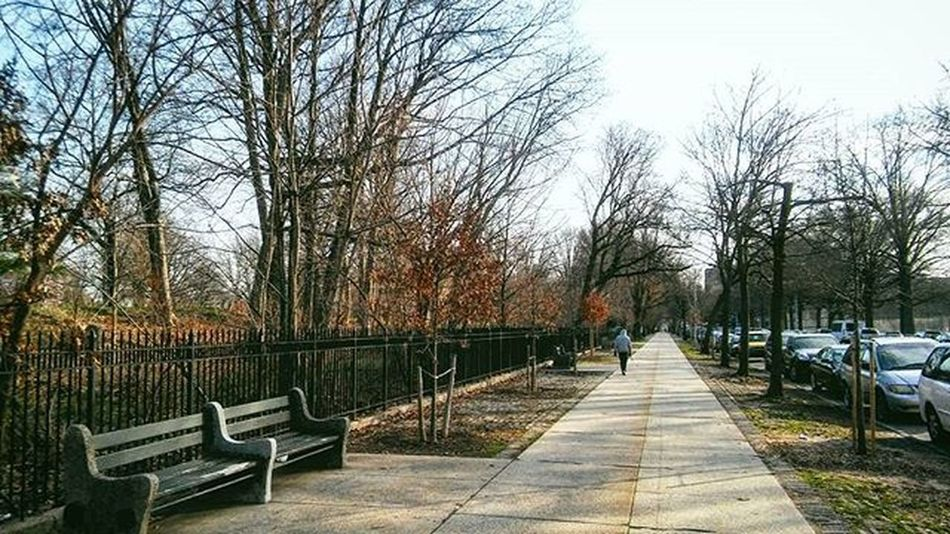 Early morning run on The Side. Brooklyn Prospect Park View Early Morning Workout BKNY Parkside Run L4l F4F Picoftheday Flatbush Joggers Thursday