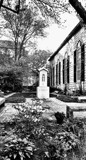 An Oasis...~ Trees Religious Place In Portland Maine USA Happiness Churchyard Stone Benches Spring Flowers Nature_perfection Beauty In Nature Springtime Tranquility No People Nature Lover Happy Moment Loving The Landscape Garden Plants Color Of Life Lights And Reflection Black And White Sunny Day Downtown Peaceful Place Sky Architecture Built Structure
